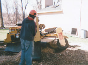 Kelley's offers stump grinding service