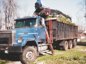 Lot's of tree removal equipment available.